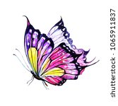 butterfly watercolor on a white | Shutterstock . vector #1065911837