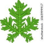 cute papaya leaf cartoon | Shutterstock .eps vector #1065999917