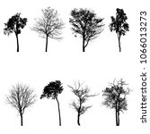 collection of tree silhouette... | Shutterstock . vector #1066013273