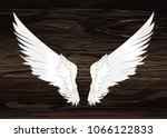 wings. vector illustration on... | Shutterstock .eps vector #1066122833