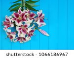fresh spring lily flowers on... | Shutterstock . vector #1066186967
