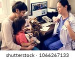 young patient is getting a... | Shutterstock . vector #1066267133