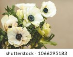 bouquet of white anemones on a... | Shutterstock . vector #1066295183