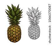 pineapple tropical fruit... | Shutterstock .eps vector #1066370087