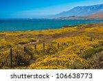 California Coast And Flowers ...
