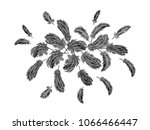 colorful feathers embroidery... | Shutterstock .eps vector #1066466447