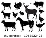 farm animals icons set....   Shutterstock .eps vector #1066622423