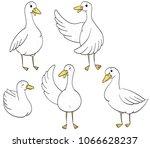 funny ducks  hand drawn... | Shutterstock .eps vector #1066628237