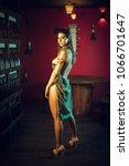 attractive slim brunette posing ...   Shutterstock . vector #1066701647