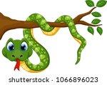 cute green snake cartoon on...   Shutterstock .eps vector #1066896023
