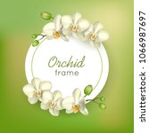 orchid round frame green... | Shutterstock .eps vector #1066987697