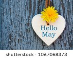 hello may greeting card with... | Shutterstock . vector #1067068373