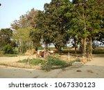 Small photo of A Beautiful sight of village