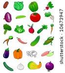 vegetables   vector | Shutterstock .eps vector #10673947