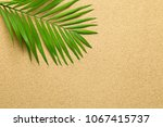 summer background with green... | Shutterstock . vector #1067415737