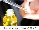 hands of a beautiful woman... | Shutterstock . vector #1067594597