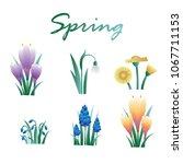 floral spring flowers. set of... | Shutterstock .eps vector #1067711153