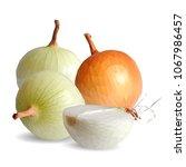 fresh  nutritious  tasty onion. ... | Shutterstock .eps vector #1067986457