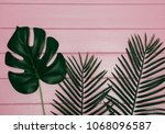 different tropical leaf  on... | Shutterstock . vector #1068096587