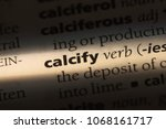 Small photo of calcify word in a dictionary. calcify concept.