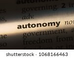 autonomy word in a dictionary....