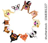 sitting dogs looking up circle | Shutterstock .eps vector #1068381227