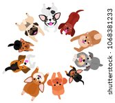 lying small dogs looking up... | Shutterstock .eps vector #1068381233