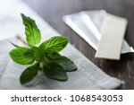 chewing gums with mint leafs on ... | Shutterstock . vector #1068543053