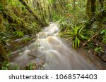 floodwater pouring through the... | Shutterstock . vector #1068574403