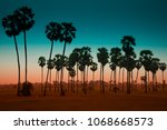 silhouette of sugar palm trees... | Shutterstock . vector #1068668573