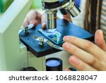 students experimenting and... | Shutterstock . vector #1068828047