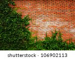 Leaf Wall Orange Brick
