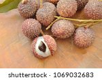 lychee tropical fruit peel out... | Shutterstock . vector #1069032683