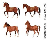 Stock vector horses in various poses set of vector illustration isolated on white background 1069121093