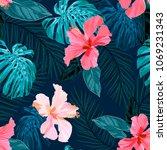 seamless tropical hand drawn... | Shutterstock .eps vector #1069231343