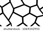 black and white irregular grid  ... | Shutterstock .eps vector #1069242953