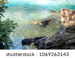 detail of water flowing over... | Shutterstock . vector #1069263143