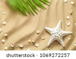 summer background with green... | Shutterstock . vector #1069272257