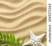 summer background with green... | Shutterstock . vector #1069272263
