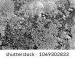 abstract background. monochrome ... | Shutterstock . vector #1069302833