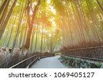 arashiyama bamboo forest with... | Shutterstock . vector #1069405127
