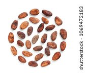 Small photo of Raw cacao bean and chocolate piece isolated white