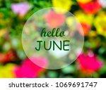 hello june.welcoming card with... | Shutterstock . vector #1069691747