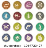 pets web icons for user in the... | Shutterstock .eps vector #1069723427