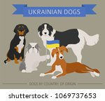 dogs by country of origin.... | Shutterstock .eps vector #1069737653