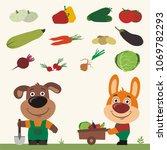 set of isolated vegetables ... | Shutterstock .eps vector #1069782293