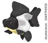goldfish on a white background | Shutterstock .eps vector #1069793933