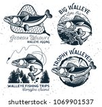 Vintage Walleye Fishing Emblem...