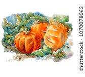 orange pumpkin watercolor... | Shutterstock . vector #1070078063