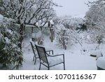 Landscape View Of Garden In...